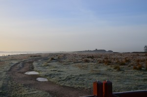 Kalø i November